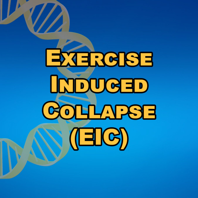 Exercise Induced Collapse (EIC)