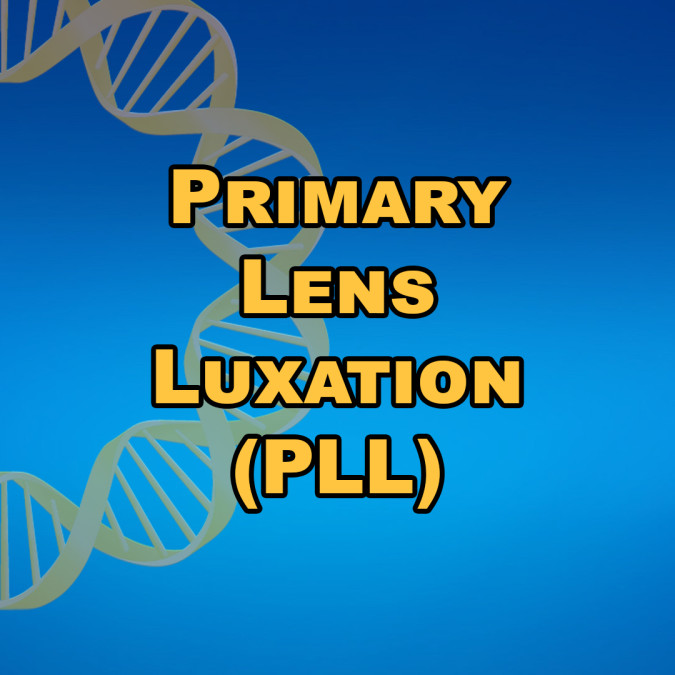 Primary Lens Luxation (PLL)