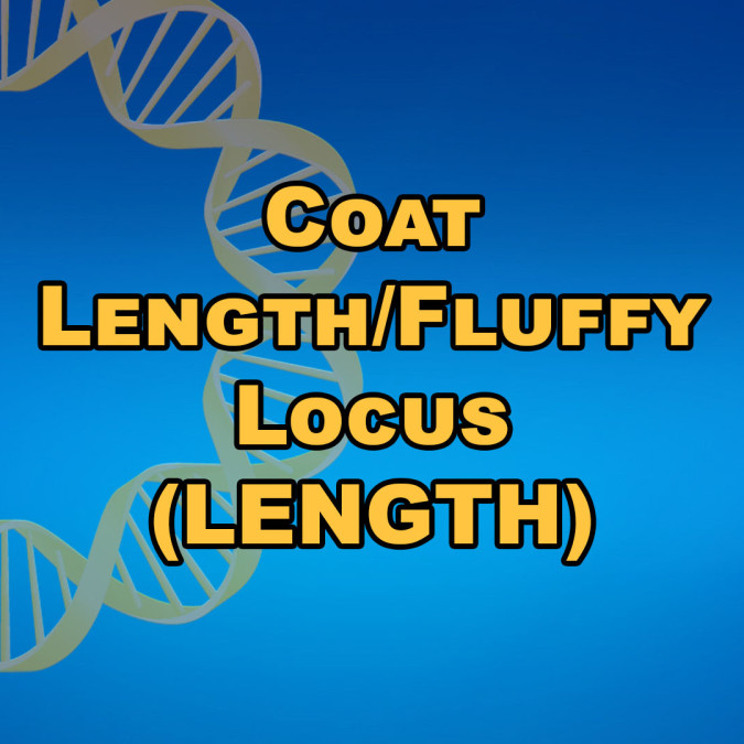 Coat Length/Fluffy Locus (LENGTH)