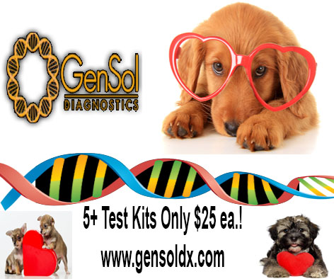 GenSol's Puppy Sale Ends Soon!