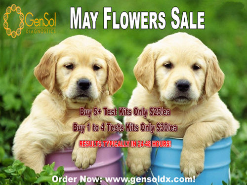 GenSol's May Flowers SALE Ends TOMORROW