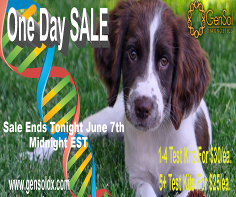 GenSol's ONE DAY SALE is today!