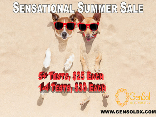 The Sensational Summer Sale Continues!