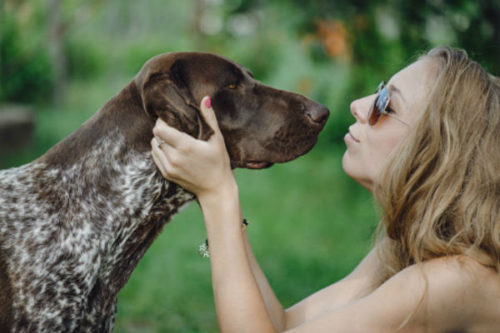 Why Do Dogs Lick Everything?