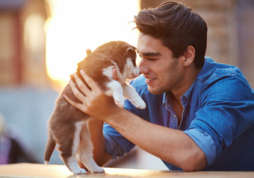 8 Reasons Why Life Is Just Better With a Dog!