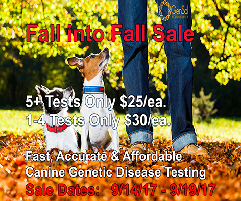 GenSol's Fall into Fall Sale Begins Today!
