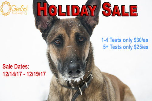 GenSol's Holiday Sale Begins, but Won't Last Long!
