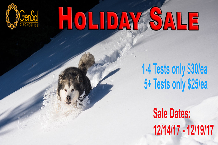 GenSol's Holiday Sale Continues!