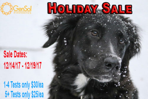 GenSol's Holiday Sale Ends TONIGHT!