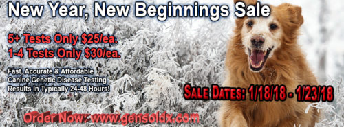 New Year, New Beginnings Sale