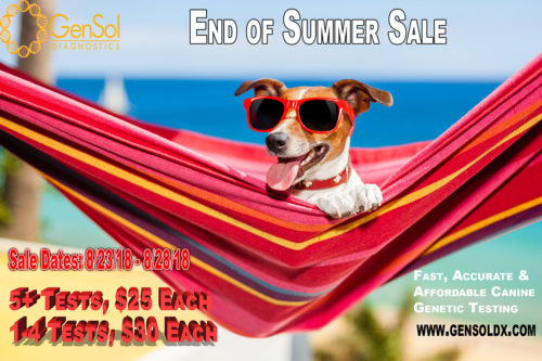 End of Summer Sale Coming to an End!