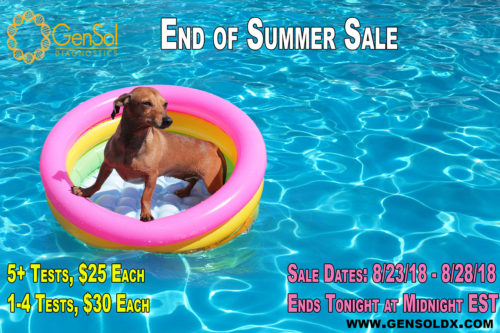End of Summer Sale Ends TONIGHT!