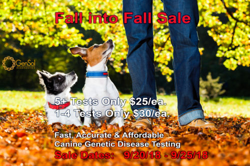 Fall into Fall Sale Starts Today!