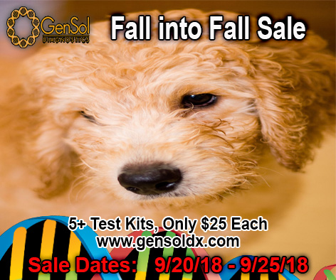 Fall into Fall Sale Ends Tonight!