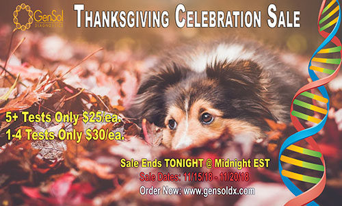 Thanksgiving Sale Ends TONIGHT!
