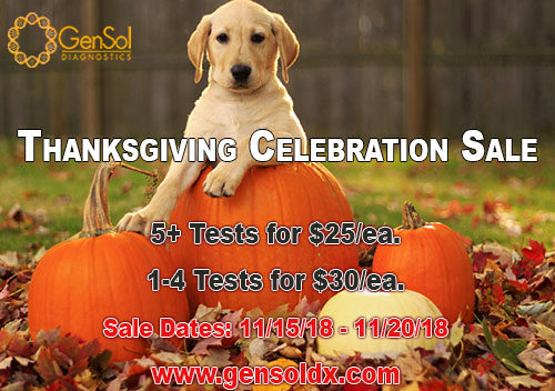 GenSol's Thanksgiving Celebration Starts TODAY!