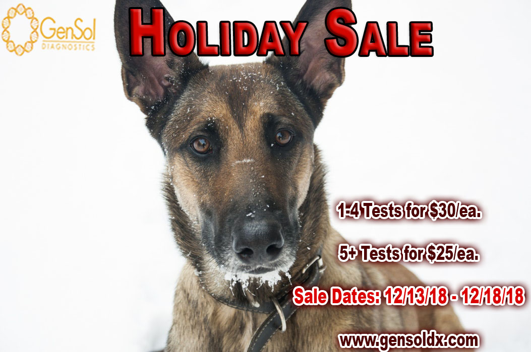 GenSol's Holiday Sale!