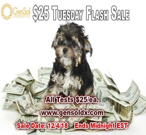 $25 Tuesday Flash Sale