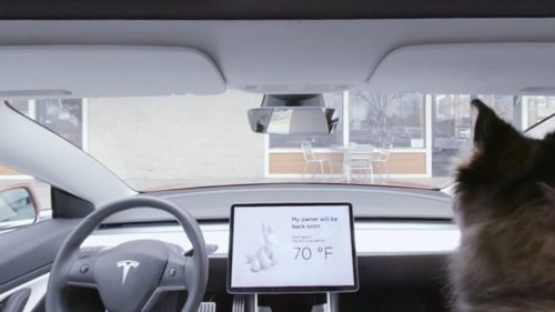 Tesla's 'dog mode' keeps unattended pets cool while vehicle is off